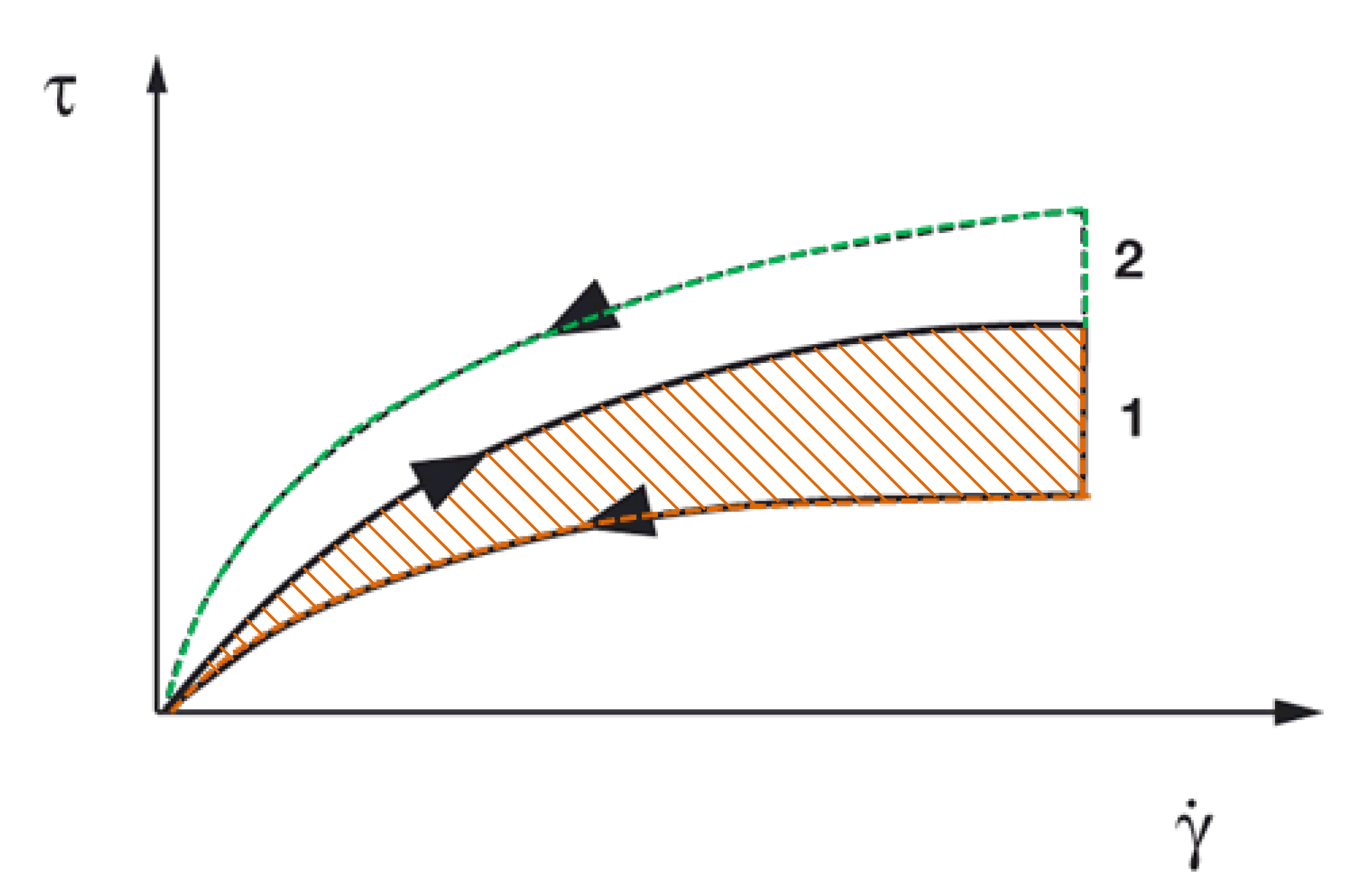 Figure 5: Flow curve showing the hysteresis area. 1 = indication for structural breakdown; 2 = indication for structural build-up, Ԏ = shear stress, y ̇ = shear rate