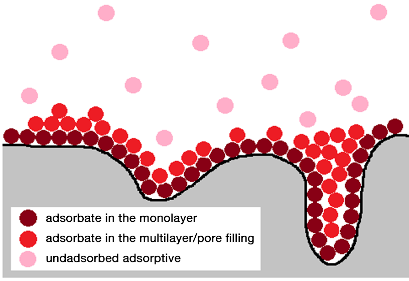Depiction of monolayer formation