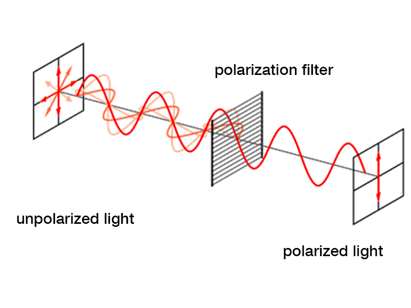 Figure 3: Polarization of light by polarizer. When unpolarized light hits a polarizer, only the component oscillating in the orientation of the polarizer can pass.