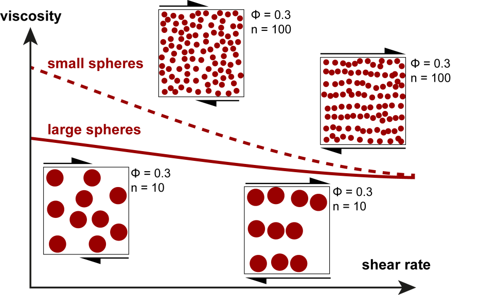 Shear-rate dependence of small and large spheres for a constant solid fraction.